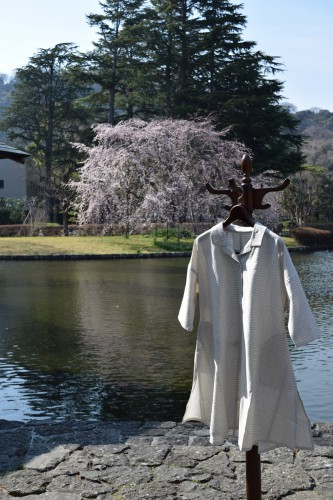 春の久留米絣